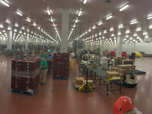 Mission Foods Manufacturing Expansion & Renovation
